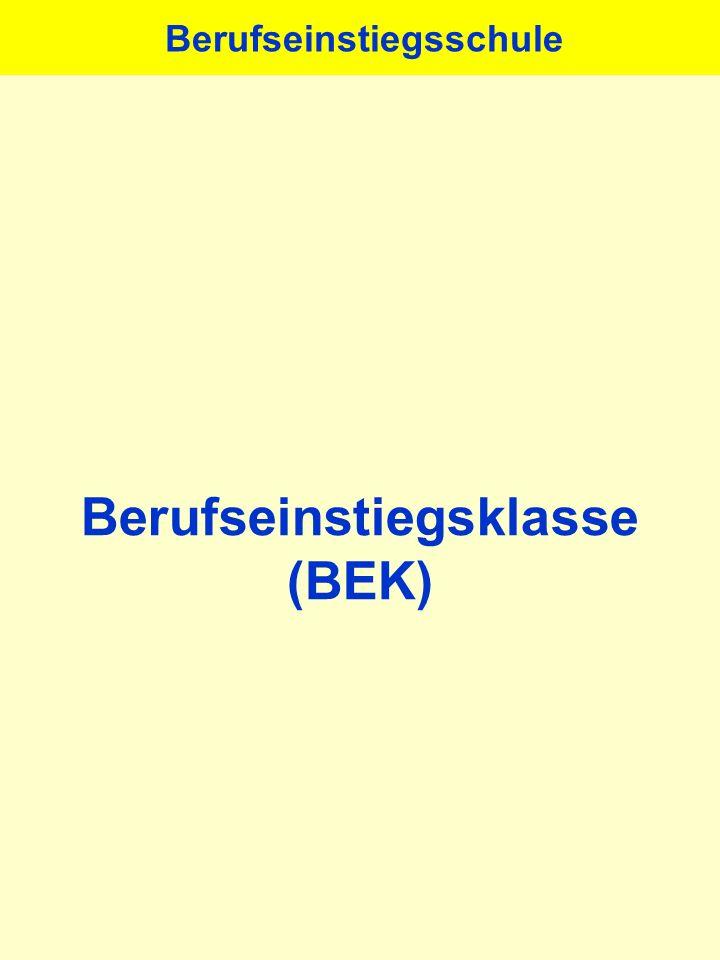 Berufseinstiegsklasse (BEK)