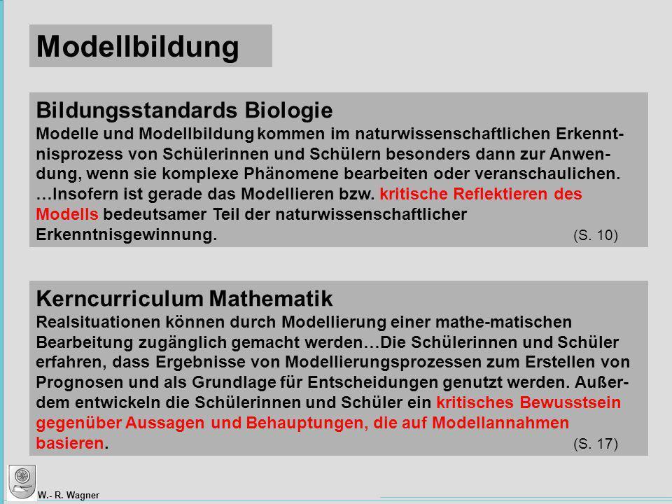 Modellbildung Bildungsstandards Biologie Kerncurriculum Mathematik