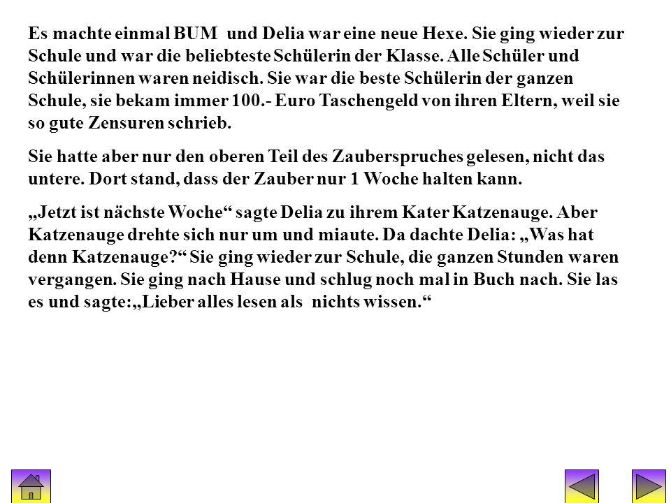 Geschichte(hexe delia) 2