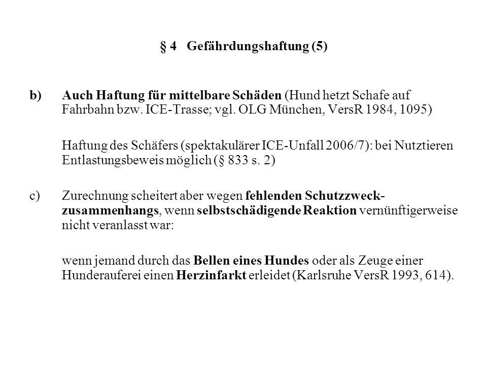 § 4 Gefährdungshaftung (5)