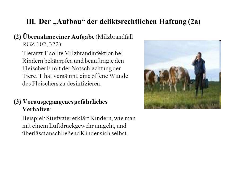 """III. Der """"Aufbau der deliktsrechtlichen Haftung (2a)"""
