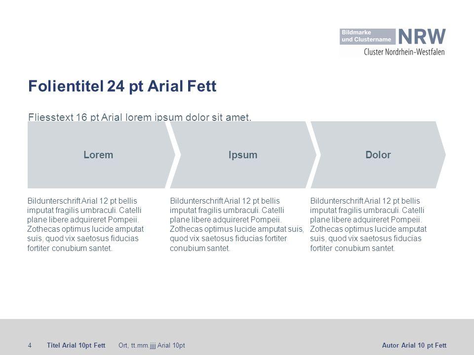 Folientitel 24 pt Arial Fett