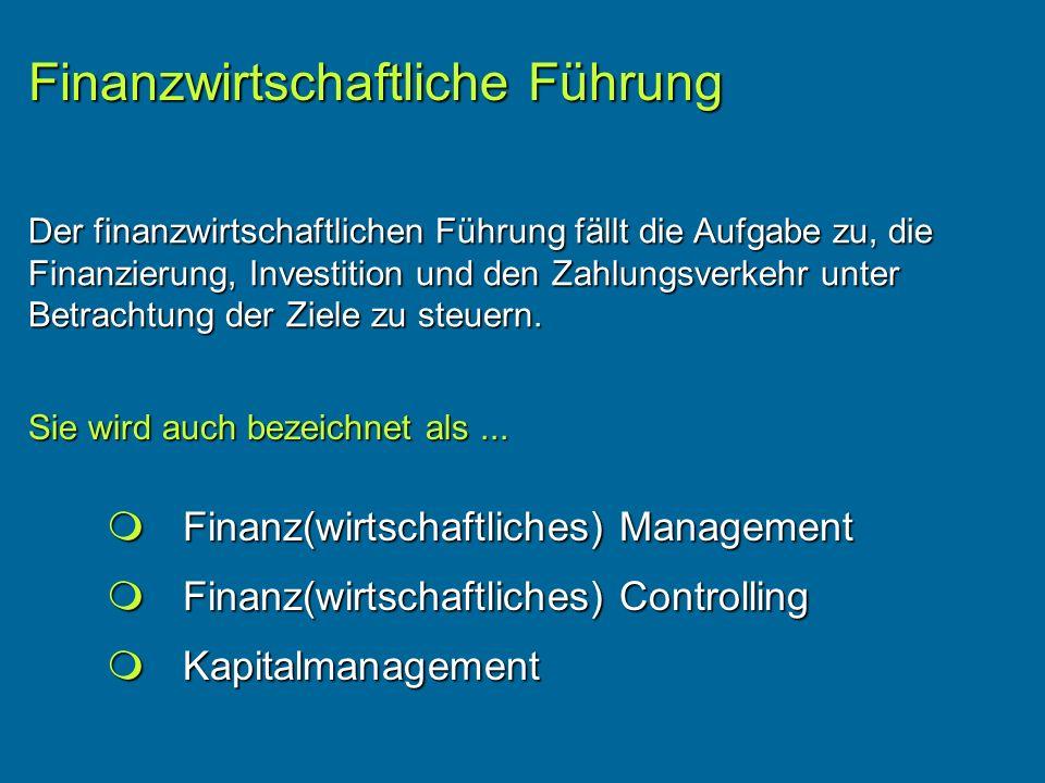 Finanzwirtschaftliche Führung