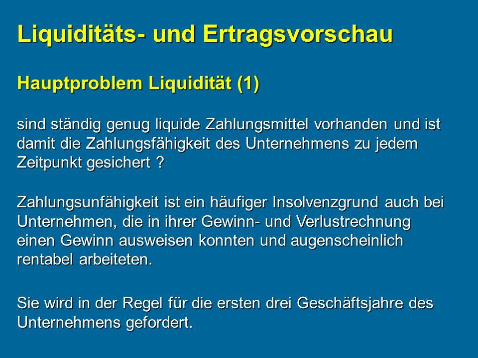 Liquiditäts- und Ertragsvorschau