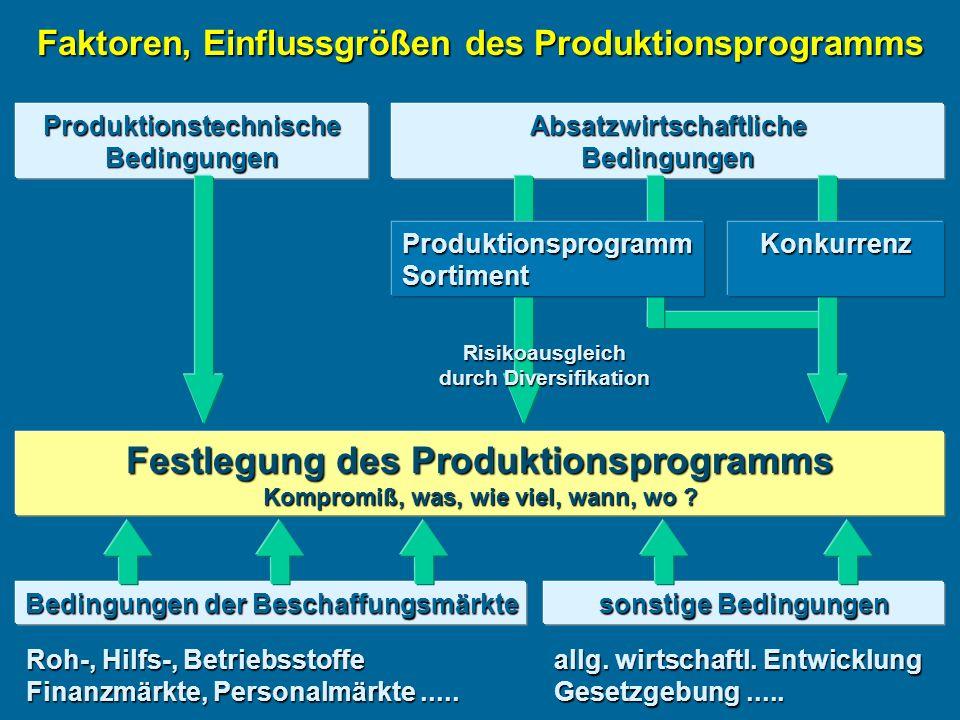 Festlegung des Produktionsprogramms