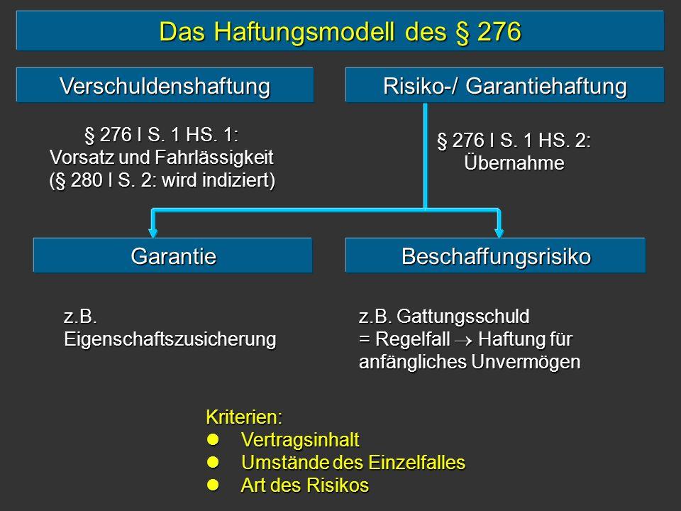 Das Haftungsmodell des § 276
