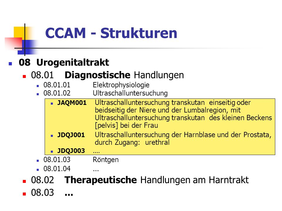 CCAM - Strukturen 08 Urogenitaltrakt 08.01 Diagnostische Handlungen