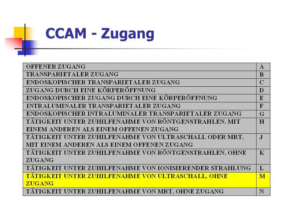 CCAM - Zugang