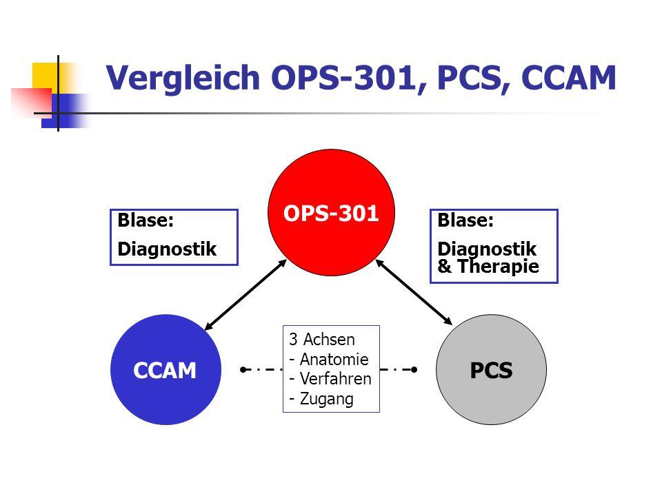 Vergleich OPS-301, PCS, CCAM