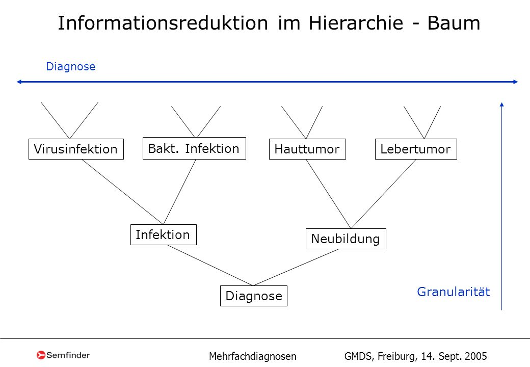 Informationsreduktion im Hierarchie - Baum