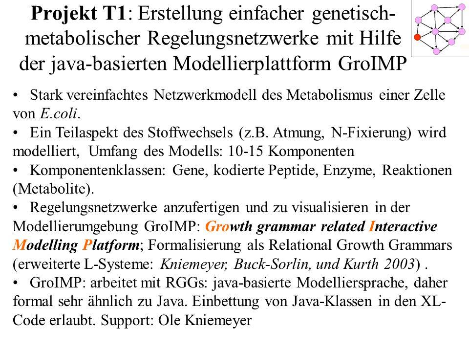 Projekt T1: Erstellung einfacher genetisch-metabolischer Regelungsnetzwerke mit Hilfe der java-basierten Modellierplattform GroIMP