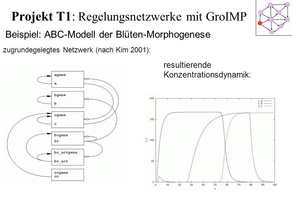 Projekt T1: Regelungsnetzwerke mit GroIMP
