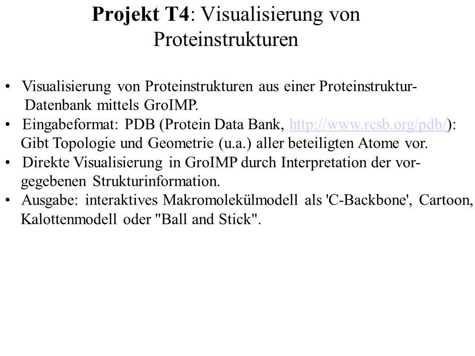 Projekt T4: Visualisierung von Proteinstrukturen