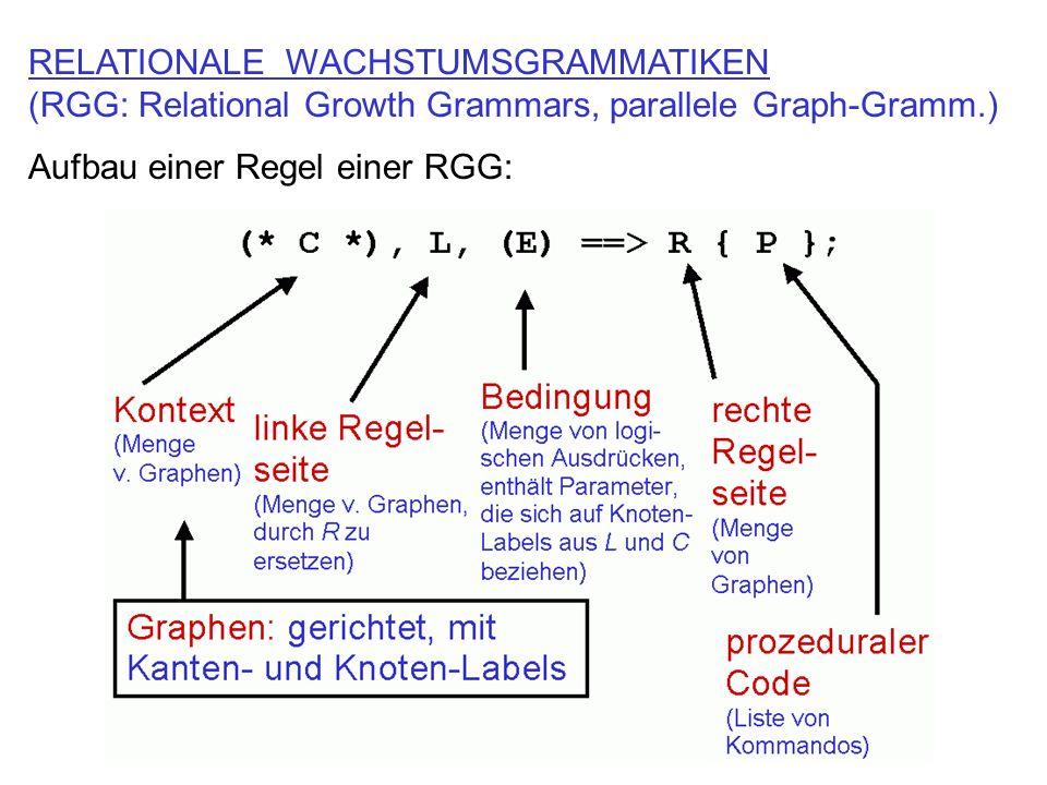 RELATIONALE WACHSTUMSGRAMMATIKEN