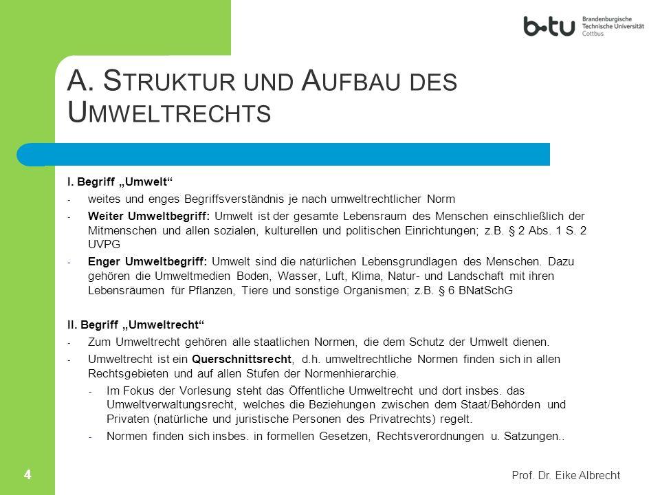 A. Struktur und Aufbau des Umweltrechts