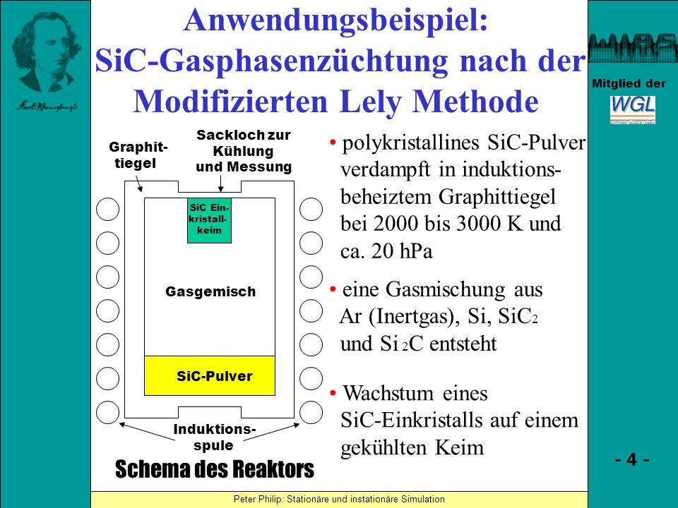 SiC-Gasphasenzüchtung nach der Modifizierten Lely Methode