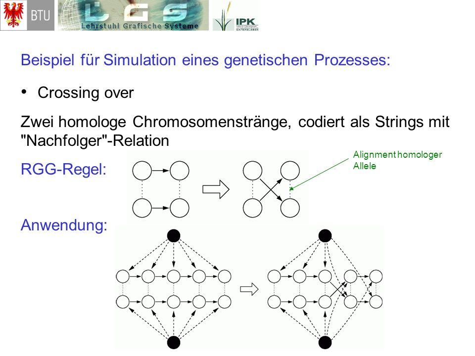 Crossing over Beispiel für Simulation eines genetischen Prozesses:
