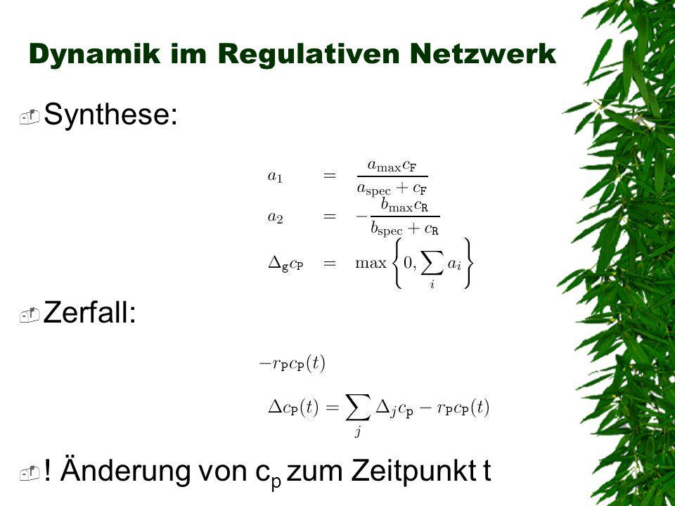 Dynamik im Regulativen Netzwerk
