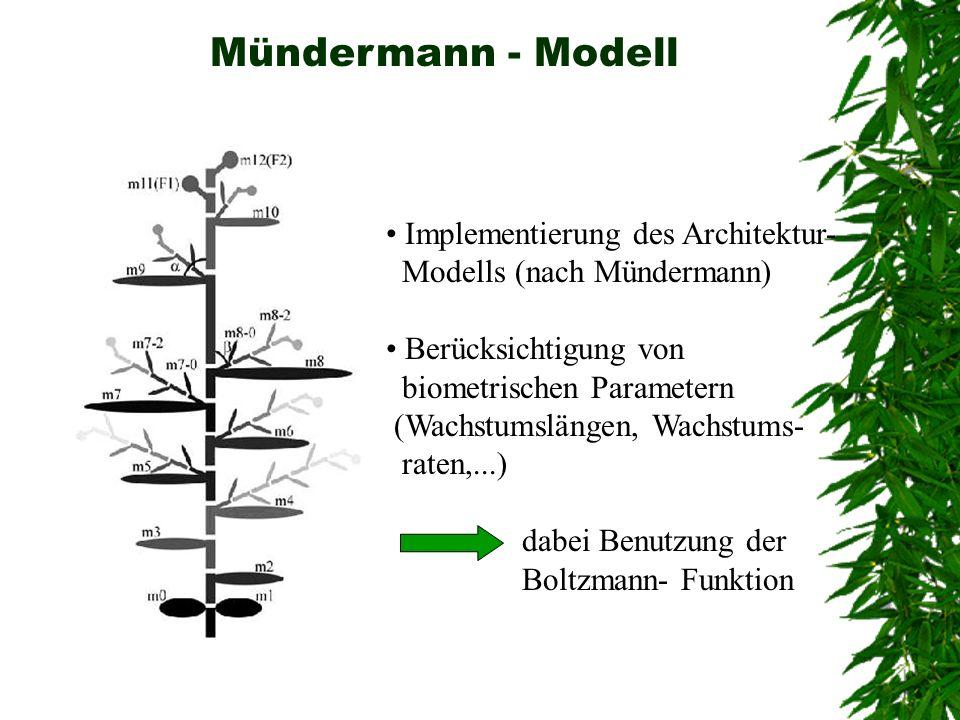 Mündermann - Modell Implementierung des Architektur-