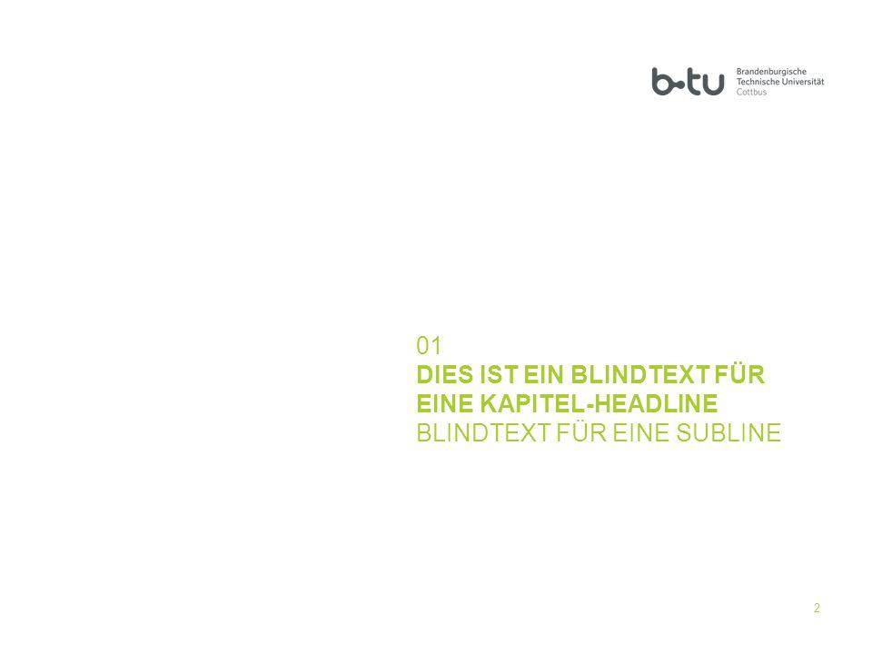 01 DIES IST EIN BLINDTEXT FÜR EINE KAPITEL-HEADLINE BLINDTEXT FÜR EINE SUBLINE