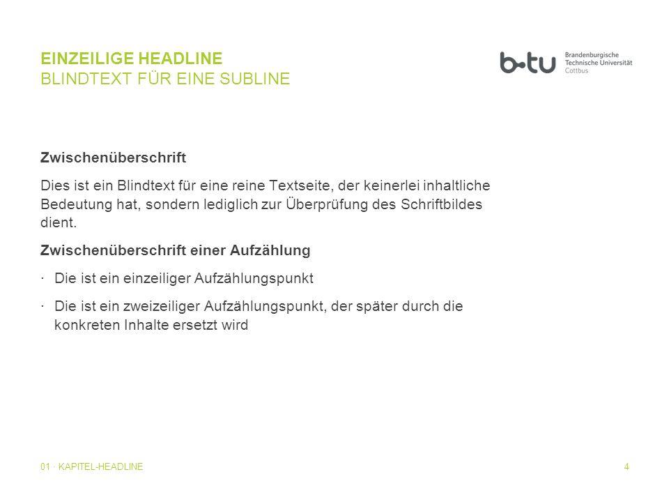 EINZEILIGE HEADLINE BLINDTEXT FÜR EINE SUBLINE
