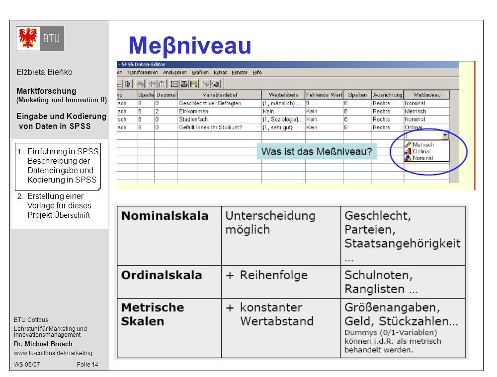 Meβniveau 1. Einführung in SPSS, Beschreibung der Dateneingabe und Kodierung in SPSS.