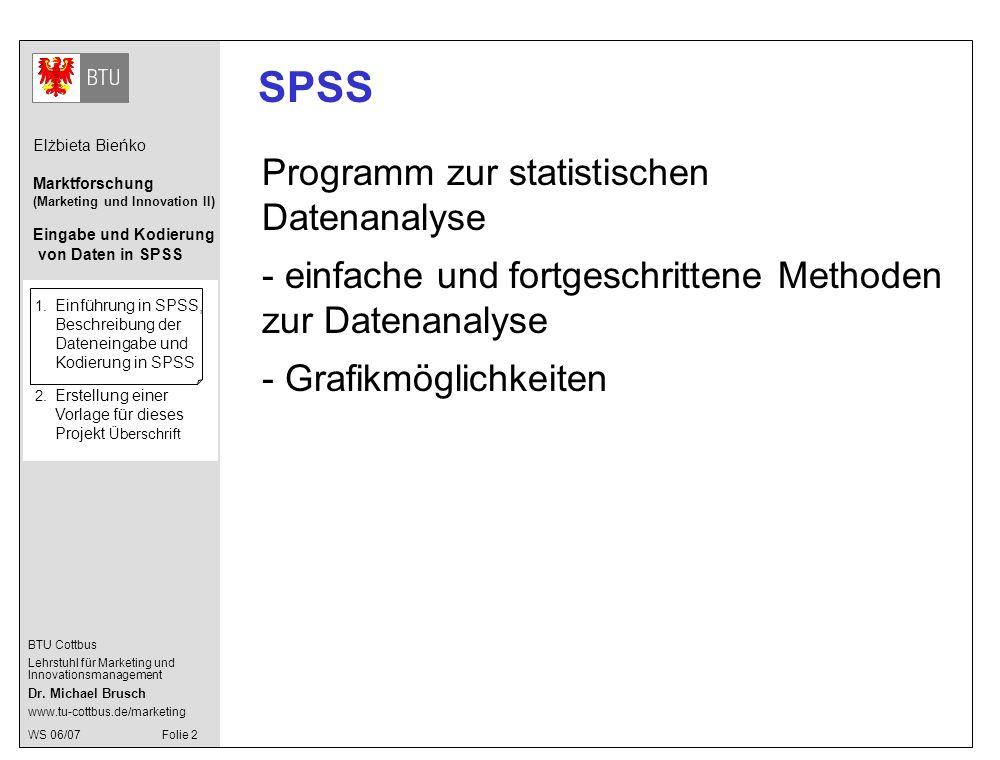 SPSS Programm zur statistischen Datenanalyse