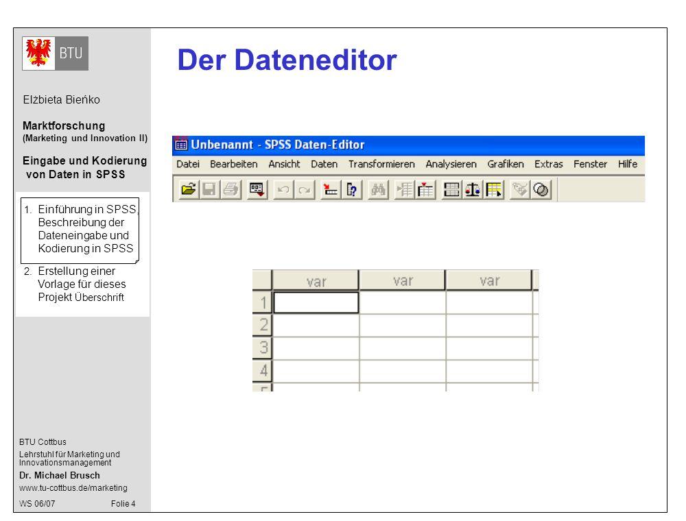 Der Dateneditor 1. Einführung in SPSS, Beschreibung der Dateneingabe und Kodierung in SPSS.