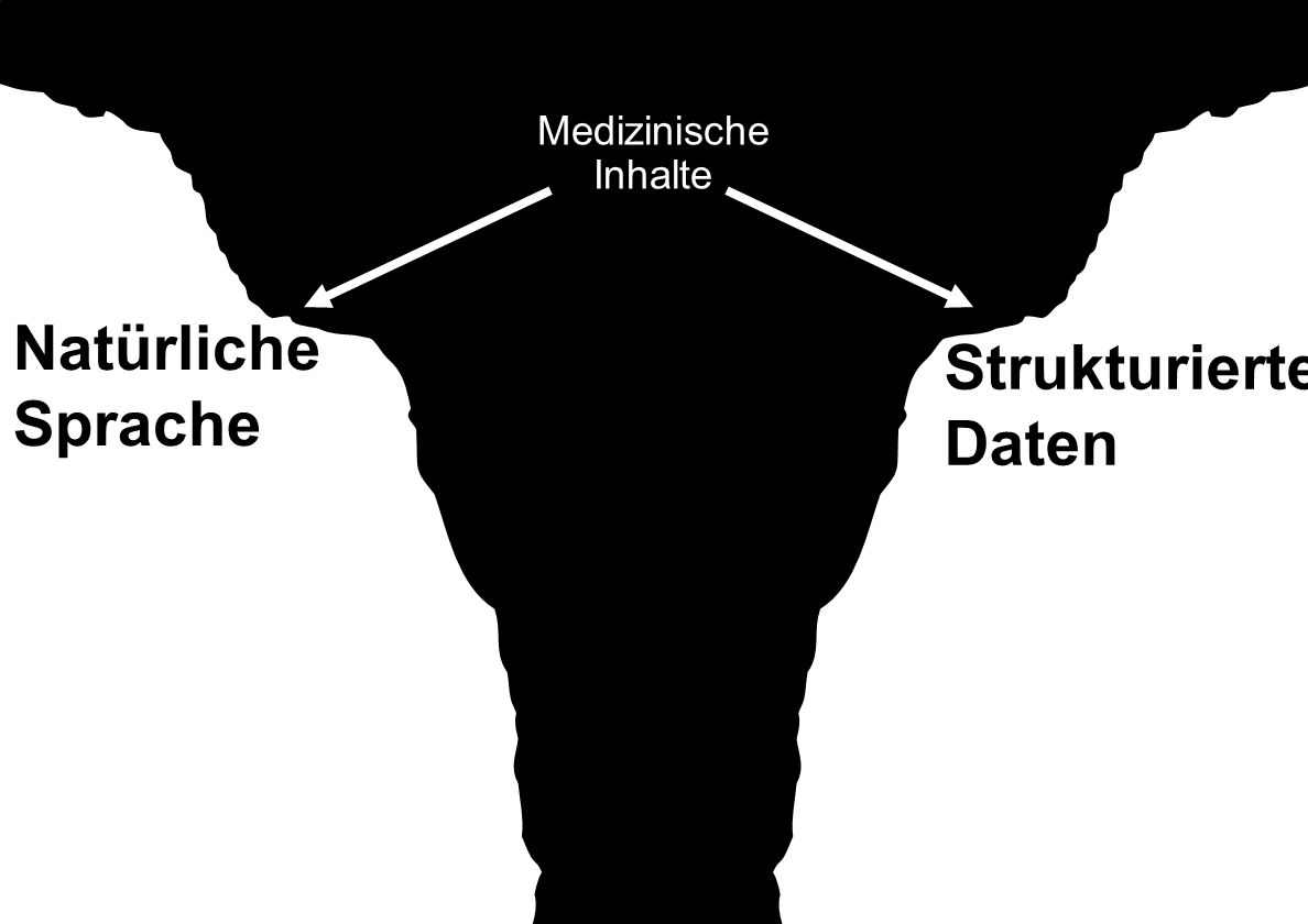 Natürliche Sprache Strukturierte Daten Medizinische Inhalte