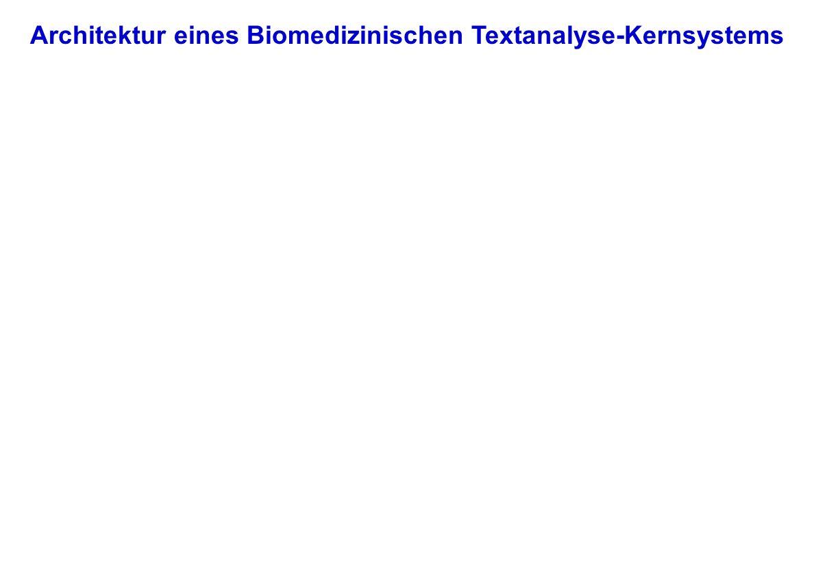 Architektur eines Biomedizinischen Textanalyse-Kernsystems