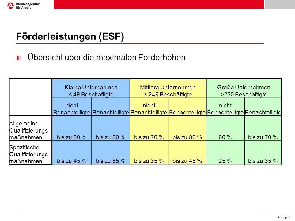 Förderleistungen (ESF)