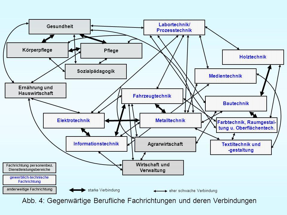 Abb. 4: Gegenwärtige Berufliche Fachrichtungen und deren Verbindungen