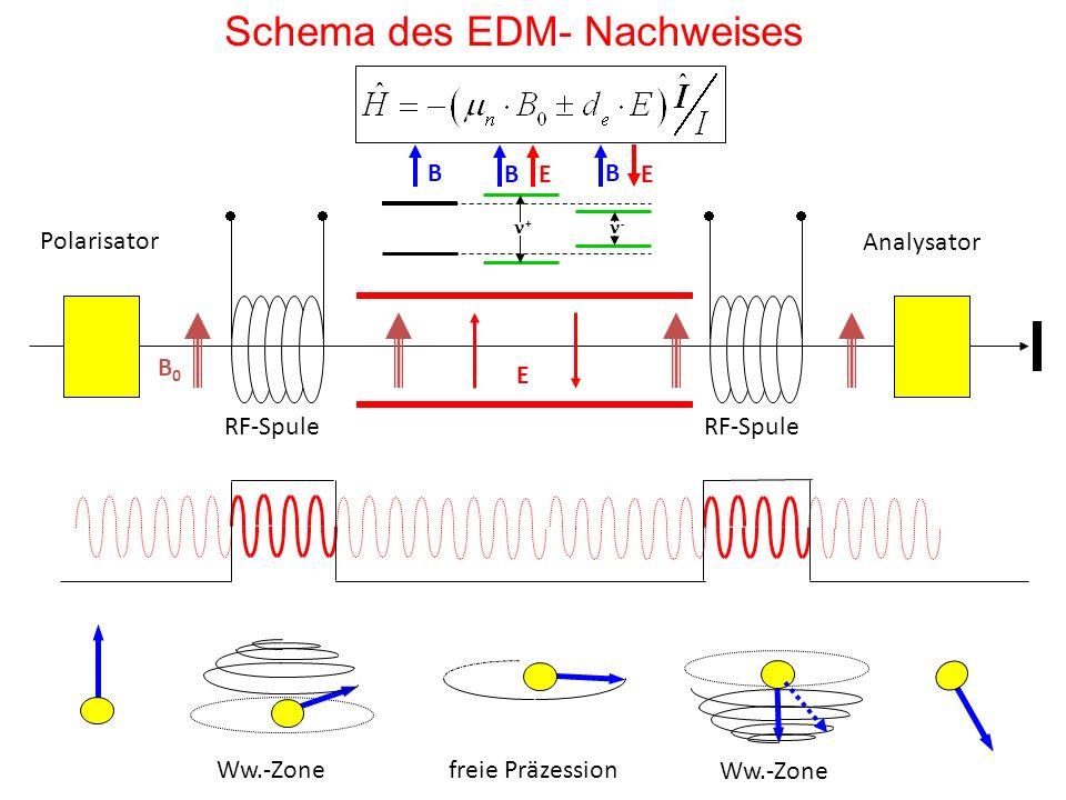Schema des EDM- Nachweises
