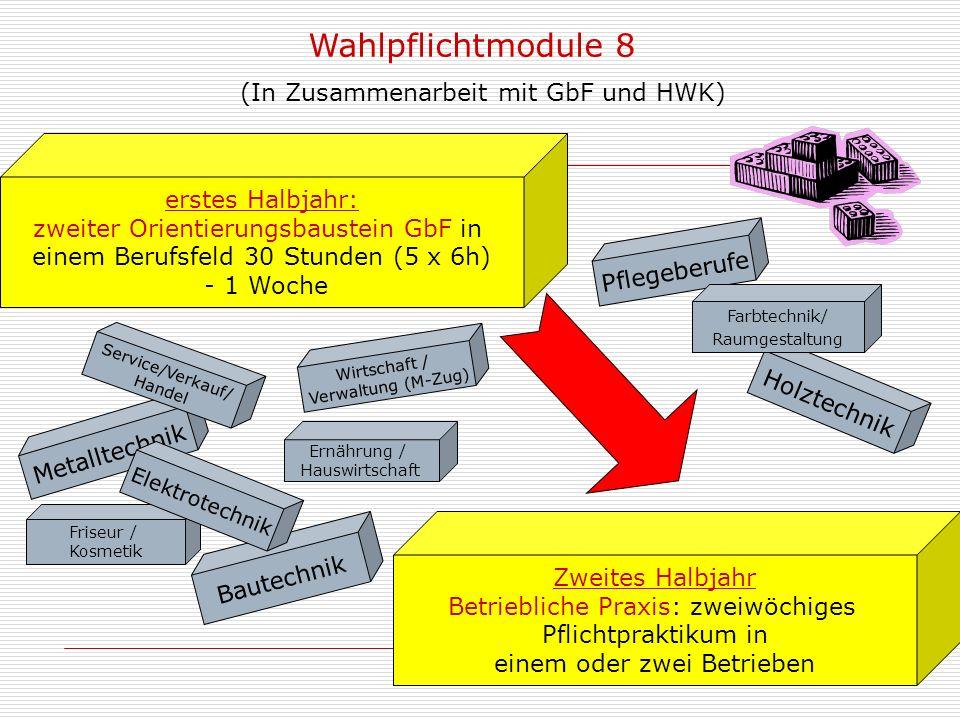Wahlpflichtmodule 8 (In Zusammenarbeit mit GbF und HWK)