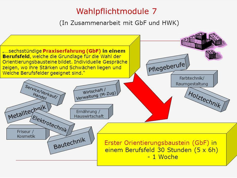 Wahlpflichtmodule 7 (In Zusammenarbeit mit GbF und HWK) Pflegeberufe