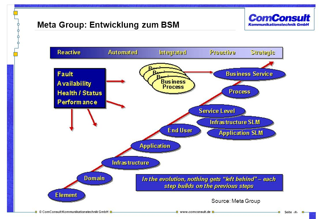 Meta Group: Entwicklung zum BSM
