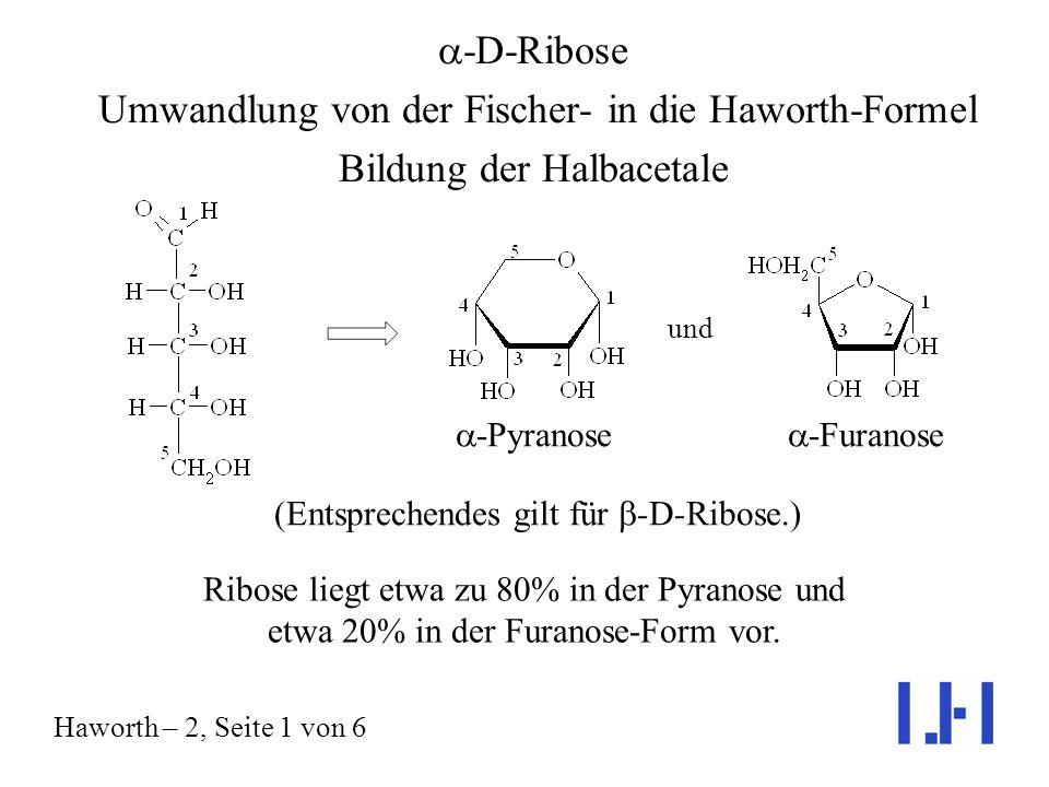 (Entsprechendes gilt für b-D-Ribose.)