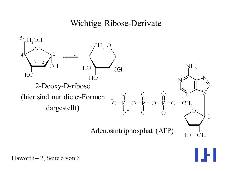 Wichtige Ribose-Derivate