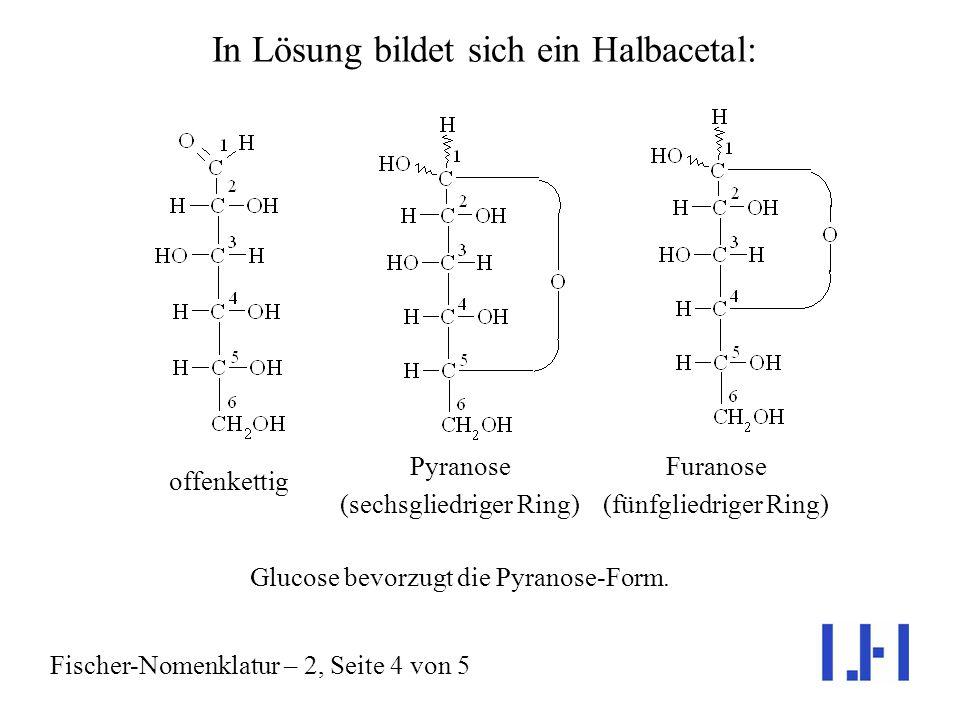 In Lösung bildet sich ein Halbacetal: