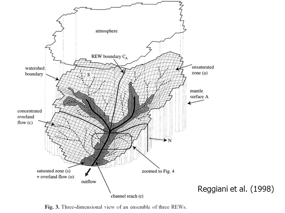 Das Konzept der REWs Reggiani et al. (1998)
