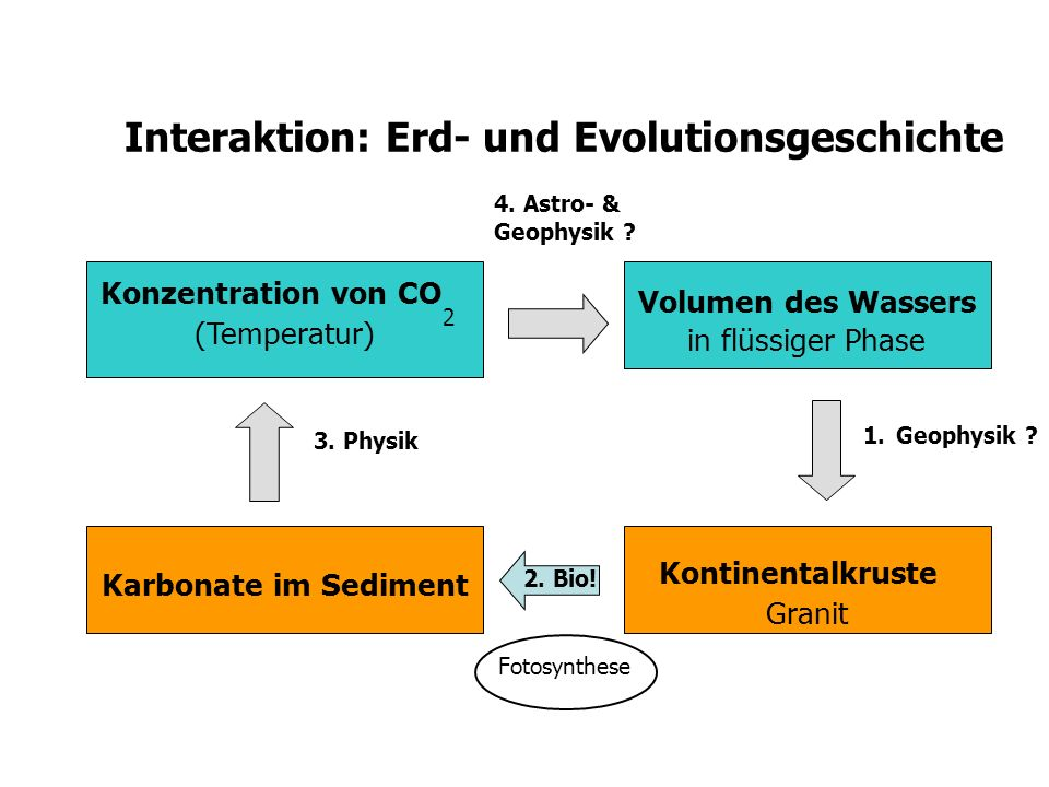 Interaktion: Erd- und Evolutionsgeschichte