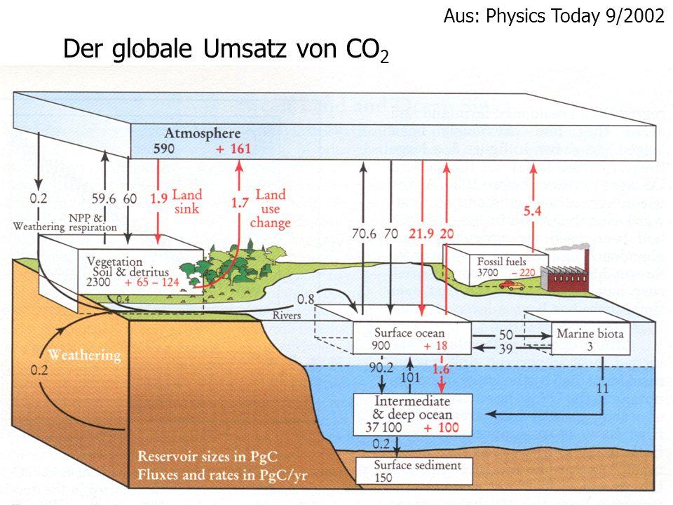 Der globale Umsatz von CO2
