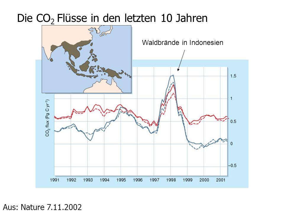 Die CO2 Flüsse in den letzten 10 Jahren