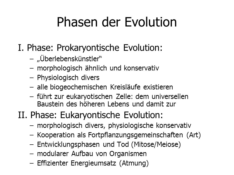 Phasen der Evolution I. Phase: Prokaryontische Evolution: