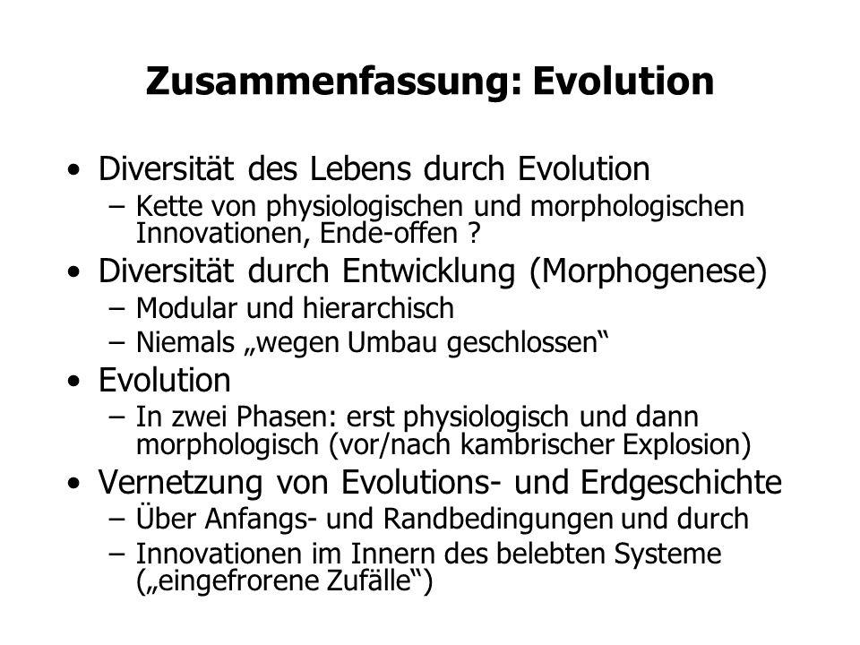 Zusammenfassung: Evolution