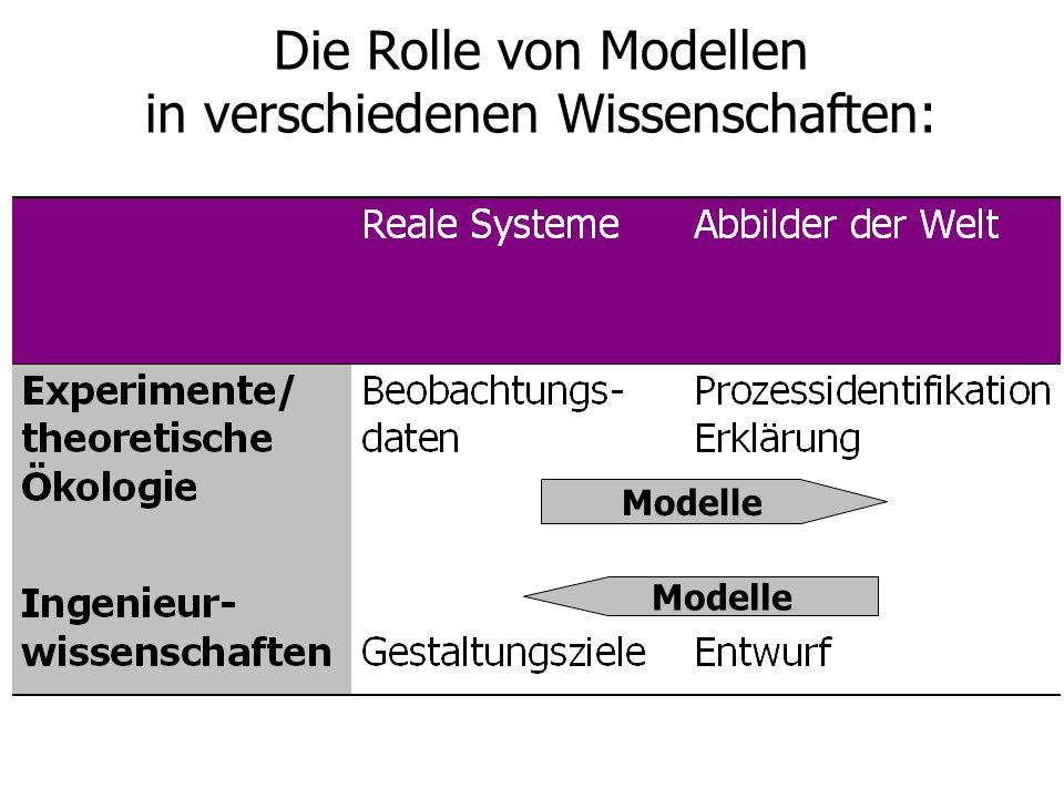 Die Rolle von Modellen in verschiedenen Wissenschaften: