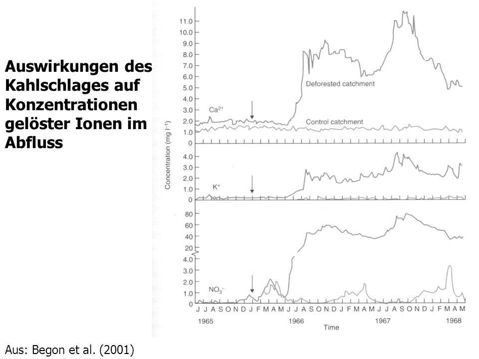 Auswirkungen des Kahlschlages auf Konzentrationen gelöster Ionen im Abfluss