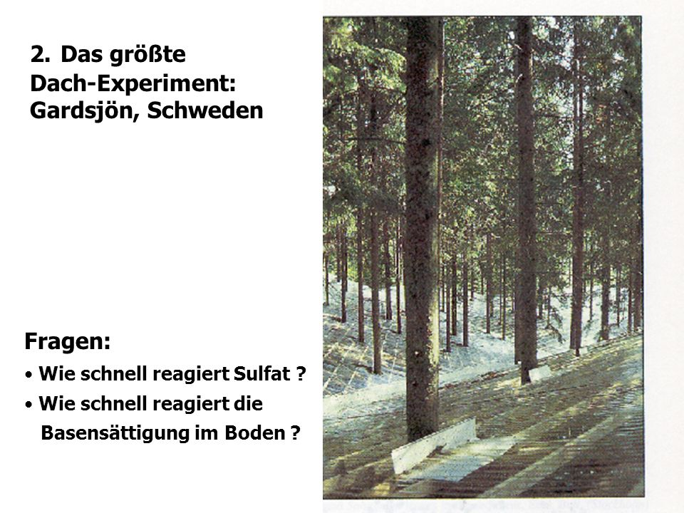 2. Das größte Dach-Experiment: Gardsjön, Schweden