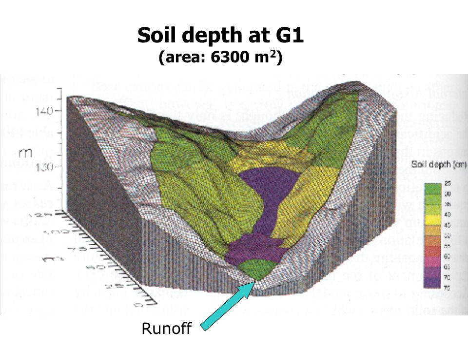 Soil depth at G1 (area: 6300 m2) Runoff