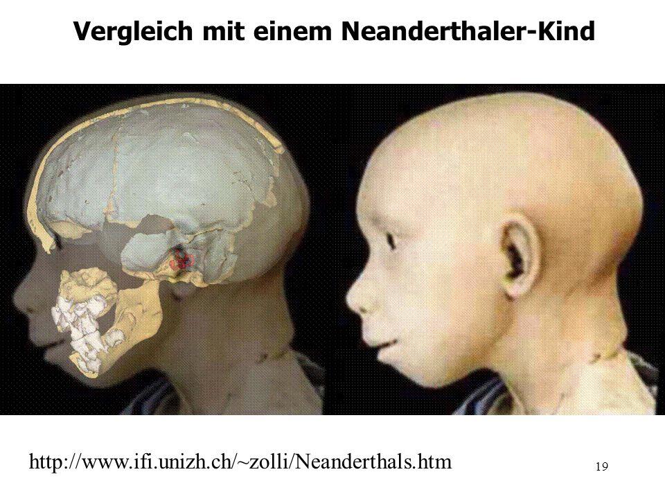 Vergleich mit einem Neanderthaler-Kind